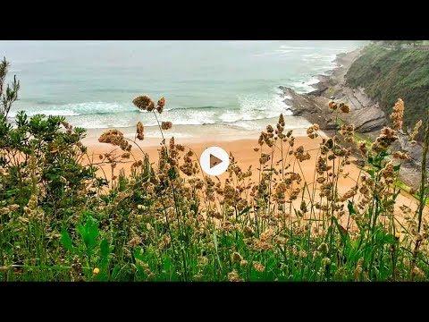 La vida en Santander: un paseo de lunes por el paseo Pereda a las 8 de la mañana