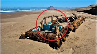 MOST Bizarre Beach Finds