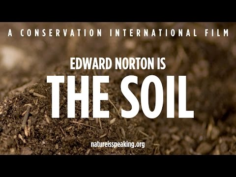 Nature Is Speaking – Edward Norton is The Soil | Conservation International (CI)