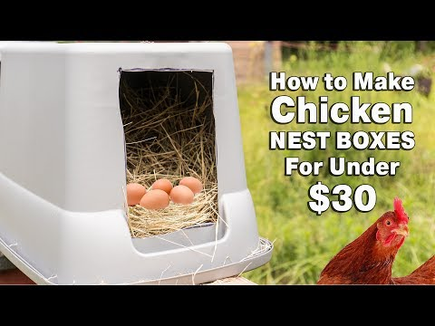 How to Make Chicken Nest Boxes For Under $30