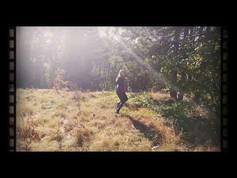 YO - forest dance in wetlookleggings