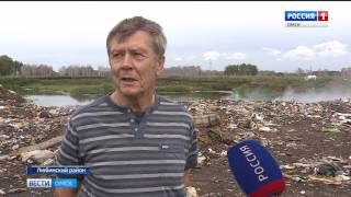 В Любинском районе выросла стихийная свалка