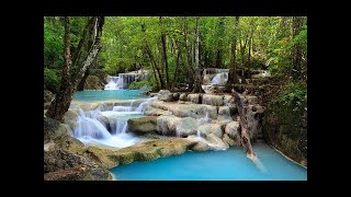 Relaxing Japanese Music with Nature Sounds 2