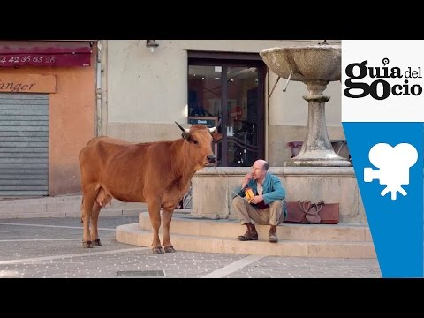 La vaca ( La vache ) - Trailer VOSE