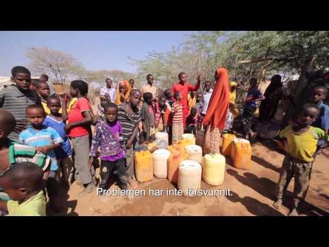 """""""Somalia är ingen plats att återvända till"""""""
