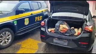 PRF prende motorista de aplicativo transportando maconha na BR-101, em Torres