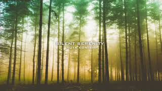 Silent Serenity - THE MOST RELAXING MUSIC -