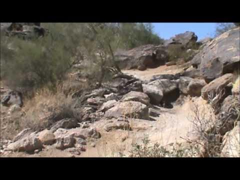 Mountain Bike Descending Body Position w/Gene Hamilton of BetterRide