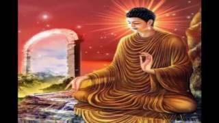 Lời phật dạy - Nhân quả nghiệp báo - Phật pháp nhiệm màu