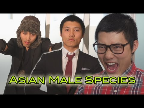 Asian Male Species
