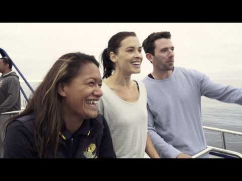 Encountering giants of the sea – Kaikoura, New Zealand