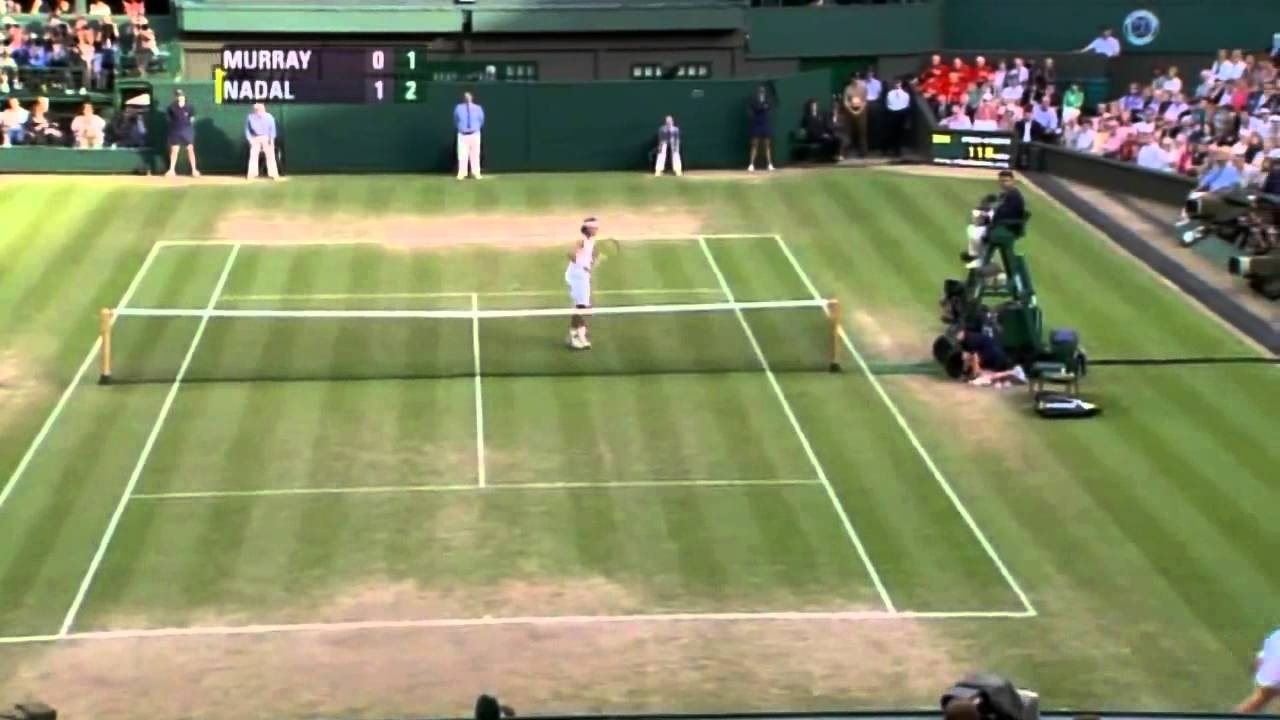 Wimbledon Highlights
