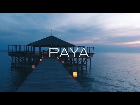 Introducing PAYA Hotel Guest Amenities
