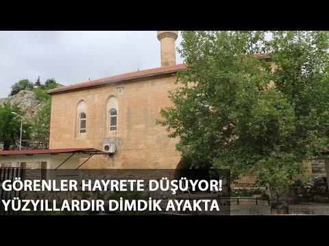 4'üncü Murat'ın Yaptırdığı Caminin Altından Akan Suda Serinliyorlar