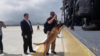 News 24h l Chó nghiệp vụ của Mật vụ Mỹ sục sạo ở sân bay Đà Nẵng