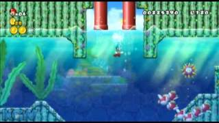 New Super Mario Bros Wii - Star Coin Location Guide - World 1-4 | WikiGameGuides