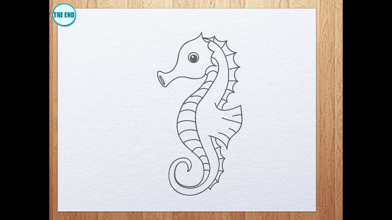 How to draw seahorse - YouTube