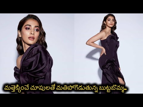 Tollywood actress Pooja Hegde looks sultry in her latest photoshoot pics
