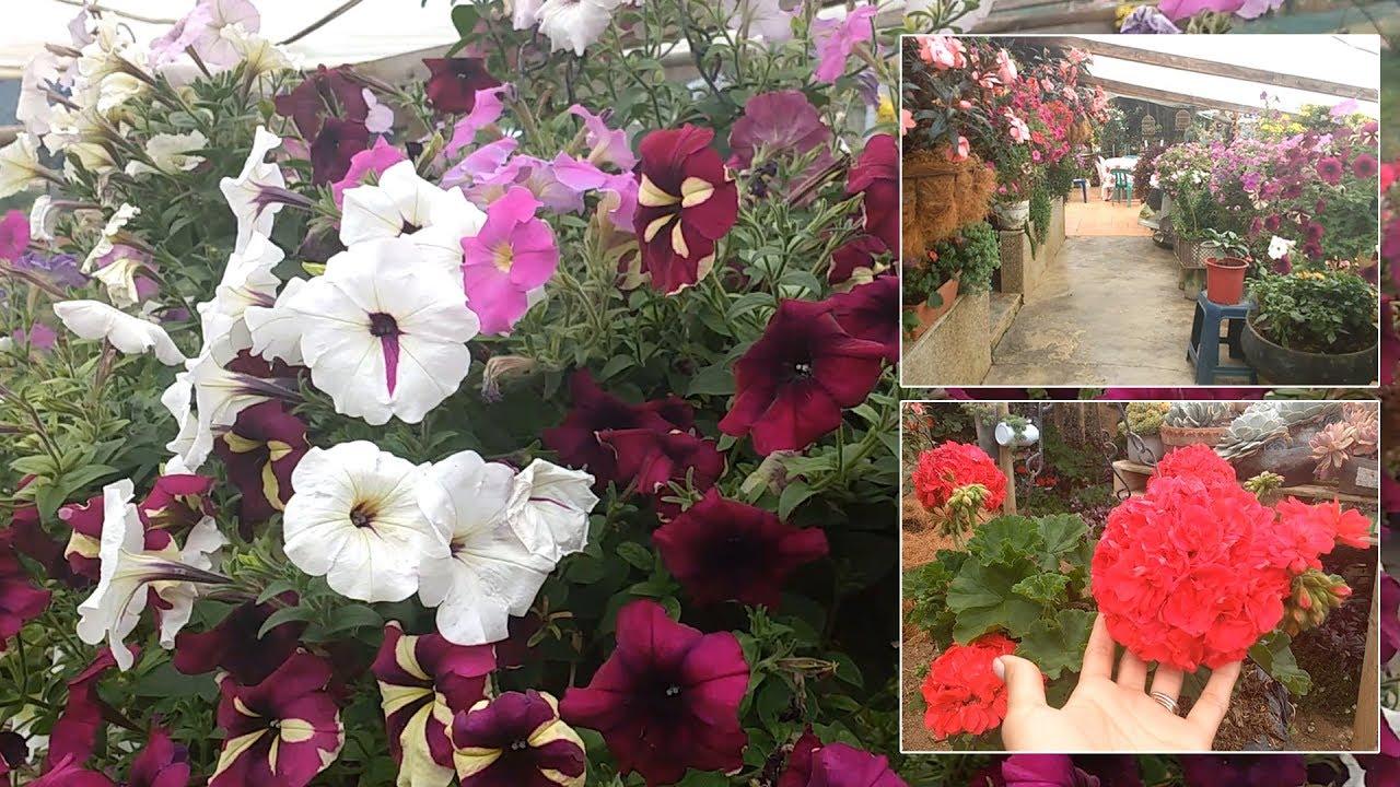 Tour por el jardín de Ofelia│Museo vivo de las flores│Candy Bu