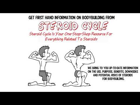Steroid Cycles For Beginners Using Anabolic