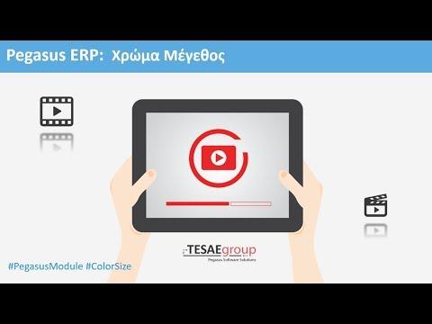 Pegasus ERP - Χρώμα Μέγεθος