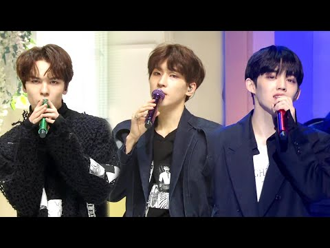 뮤직뱅크 Music Bank -Home - 세븐틴(SEVENTEEN).20190125