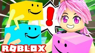 /becoming a funny box in roblox