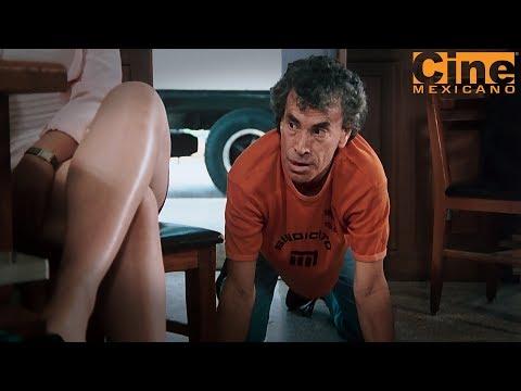 La Cantina |  Sigue Link Debajo Para Película Completa | Estreno 17 de septiembre en Cine Mexicano