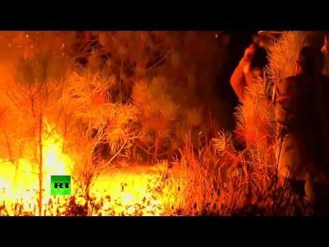 Лесные пожары в Португалии: один человек погиб