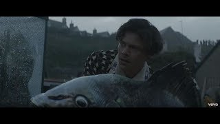 Harry Styles takes us to Eroda and befriends a massive fish for bizarre Adore You music video  - Lat