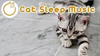 Cat Sleep Music - Send Your Cat To Sleep Now!