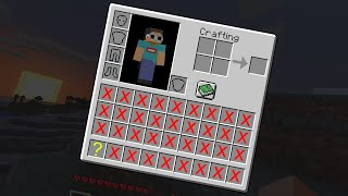 Minecraft, But Our Inventory Shrinks...