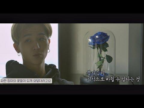 송민호(Song Min-ho)에게 가슴 깊이 와닿은 파란 장미의 꽃말 ☞ '기적' 인간지능 1회