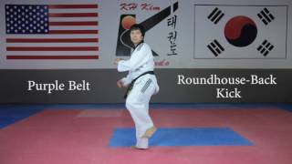 KH Kim Taekwondo Basic Kick Tutorial