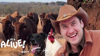 Brad Goes Ranching in Texas | It's Alive: Goin' Places | Bon Appétit
