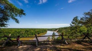Florida Travel: Explore the Apalachicola Bluffs and Ravines Preserve