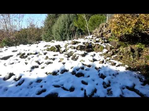 La neve a nicolosi 10/12/2012 maurizio