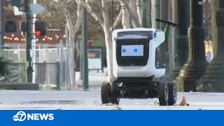 Adorable robots helping with food delivery in California