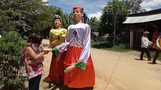 ទីងមោង ( Ting Mong, Giant-Cambodia)