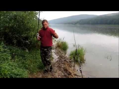 ловля толстолобика летом на течении видео