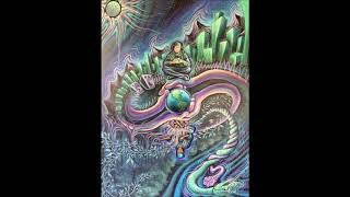 Terence Mckenna - Facing The Answer