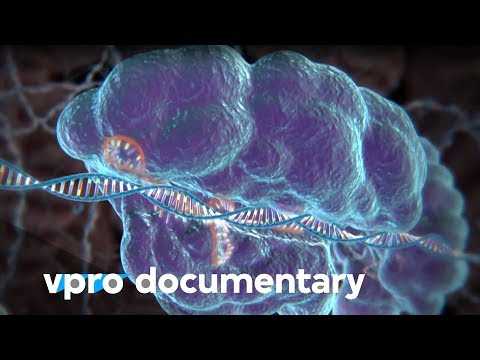 Hack your DNA with CRISPR