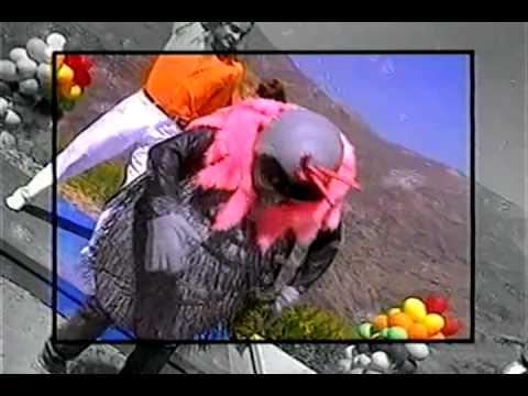 Cachureos - La Mosca Tiene Swin (Audio Remasterizado y video mejorado)