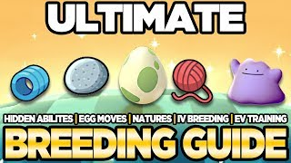 ULTIMATE Breeding Guide IVs, EVs, Natures, Egg Moves Pokemon Ultra Sun and Moon | Austin John Plays