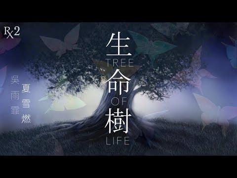 生命樹 【夏雪燃 翻唱】原唱:吳雨霏