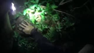 Senderismo en la noche