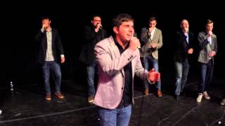 Fireflies (Owl City a cappella cover)