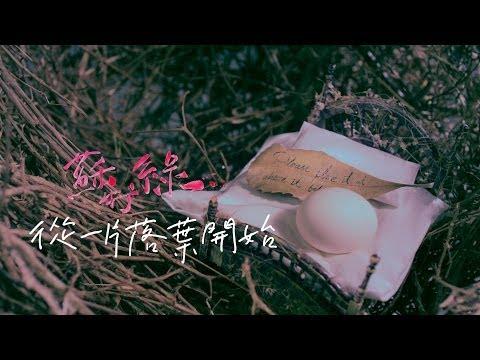 蘇打綠 sodagreen -【從一片落葉開始】Official Music Video