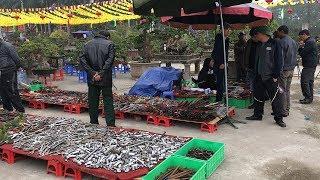 Tranh nhau mua hàng Nhật bãi bày la liệt ở Hà Nội
