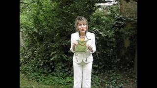 Das Märchen von der froschköniglichen Kaulquappe